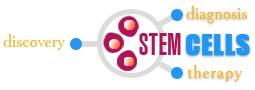 iepor stem cells logo